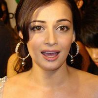 Dia Mirza Feels Celebrities are Wrongly Targeted by the Customs